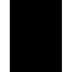 EIDER CERVA Rindlederhandschuhe